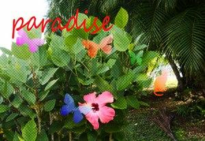 Guam_haibi_hikume