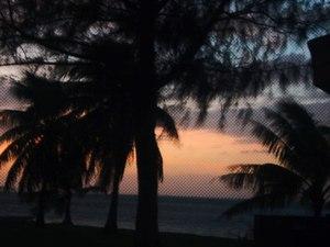 Guamu_yuugure